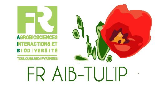 Trois projets sélectionnés dans le cadre de l'AO TULIP - FR AIB !