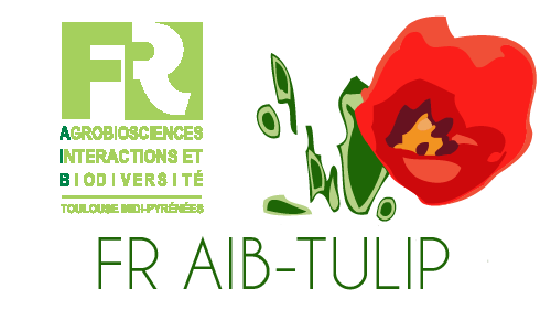 Three supported projects for the TULIP - FR AIB call for proposals