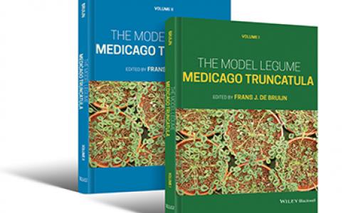 The model legume Medicago truncatula