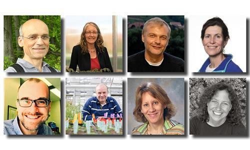 Nouvelle cuvée pour le Conseil Scientifique International du LabEx
