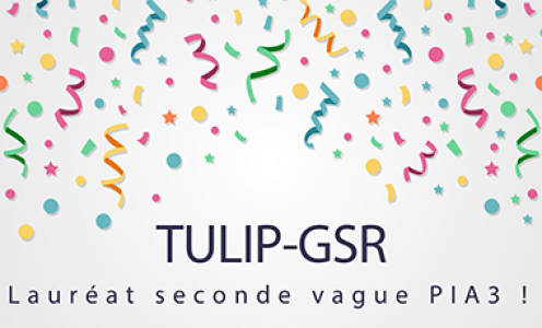 TULIP-GSR laureate of the second wave of the PIA3!