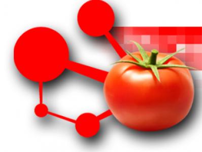 Un atlas de l'expression des gènes de tomate