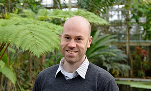 A « Junior Package » for Aurélien Carlier and his research on foliar symbiosis