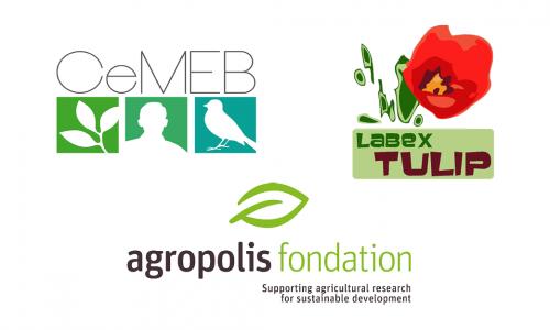Science Day for the Occitanie / Midi-Pyrénées green LabExes