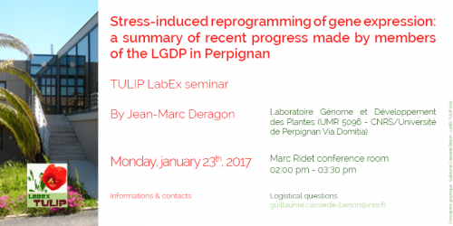 Stress-induced reprogramming of gene expression: a summary of recent progress made by LGDP members