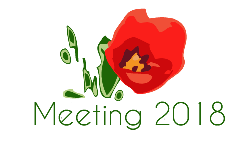 Meeting International TULIP 2018