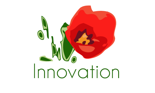 Innovation Calls for Projects