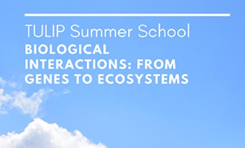 REPORTEE - Ecole d'été en Biologie et Ecologie intégratives 2020
