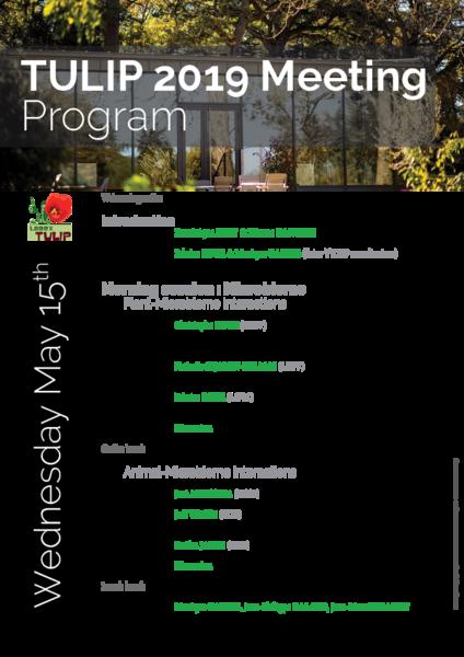 ProgrammeMeetingTULIP2019
