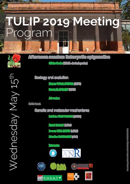 ProgrammeMeetingTULIP20192