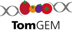 TomGem_Logo_Final_Big