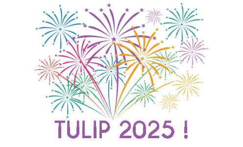 The TULIP adventure will continue until 2025!