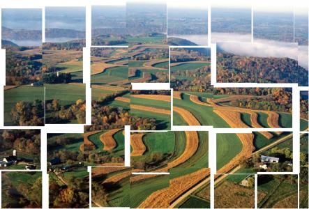 Simuler la stabilité des écosystèmes à grande échelle
