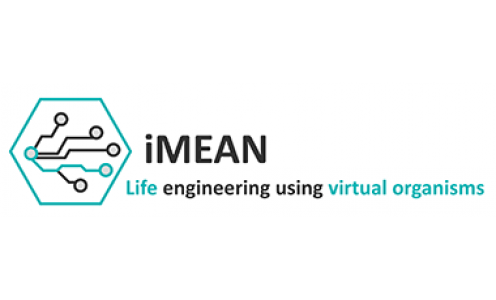 iMEAN, la startup issue de TULIP qui reconstruit virtuellement les organismes vivants