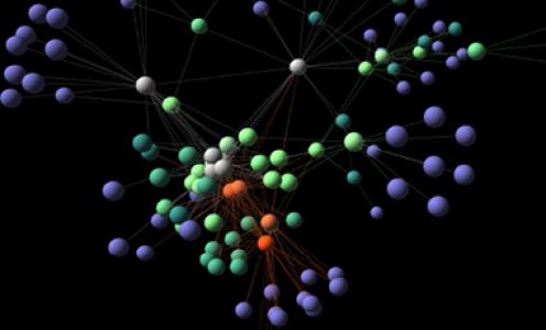 L'échelle spatiale des réseaux d'interaction entre espèces