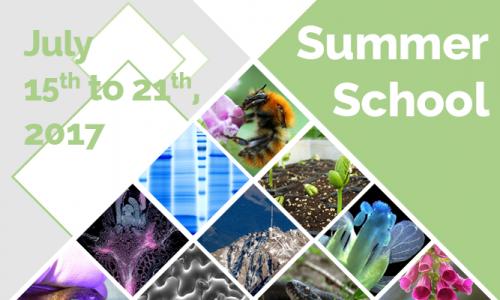 Ecole d'été en Biologie et Ecologie intégratives 2017